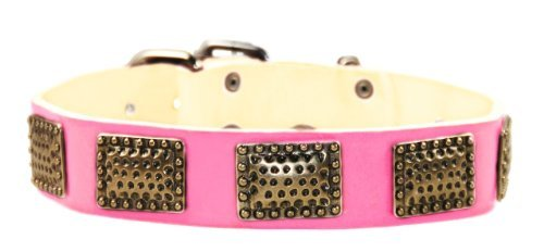 "Dean & Tyler "" Drum Roll"" 30-Inch Dog Collar"