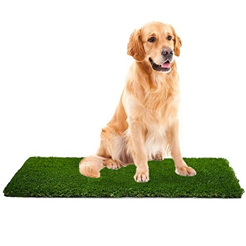 MTBRO Artificial Grass Rug