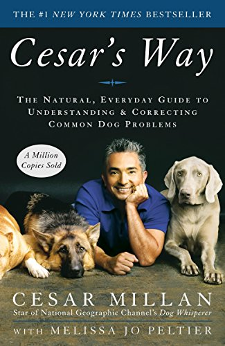 Cesars-Way-Everyday-Understanding-Correcting dog training book