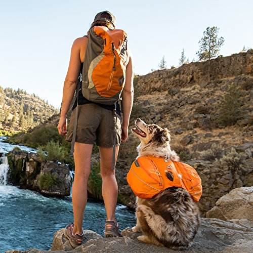 Ruffwear Approach Hiking Backpack for Dogs