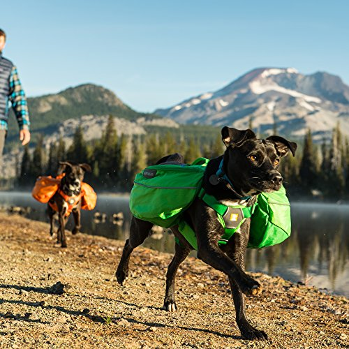 Ruffwear Approach All-Day Dog Backpack