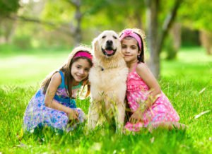 Golden Retriever with Kids
