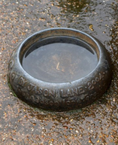 old-dog-water-bowl-made-of-steel
