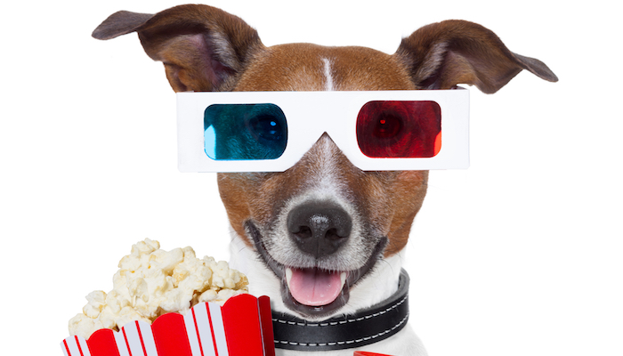 Best Dog Movies & Films