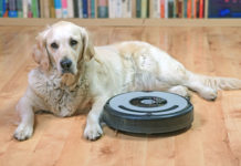 Best Cordless Vacuum Cleaners for Pet Hair