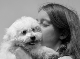 Woman kissing white dog