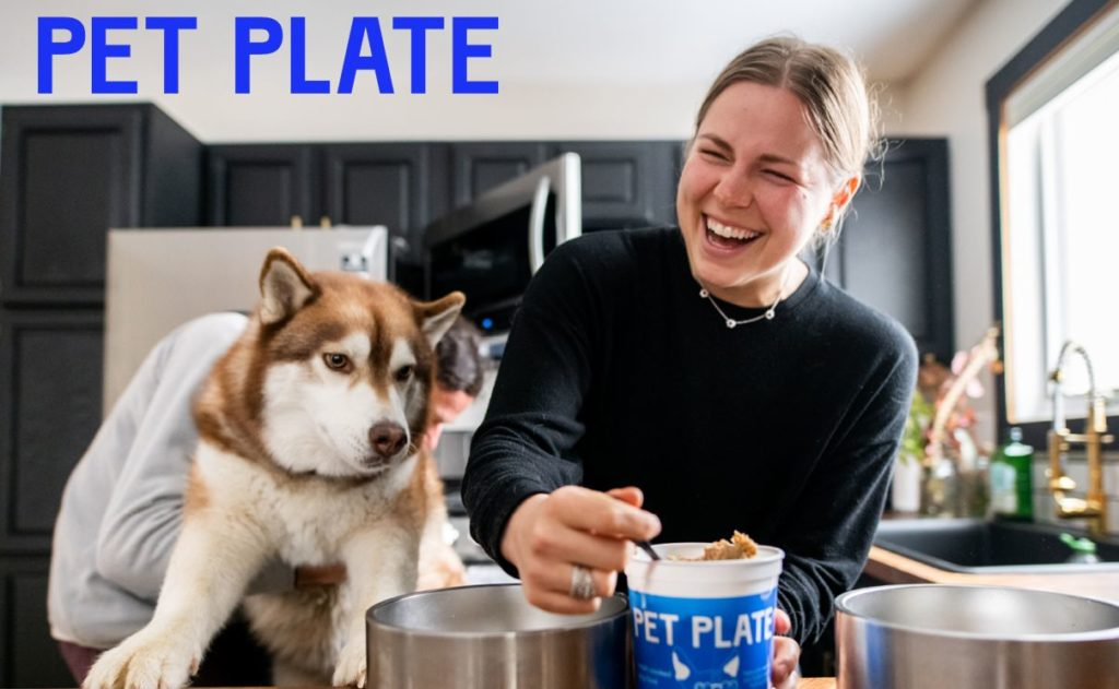 woman feeding dog pet plate dog food