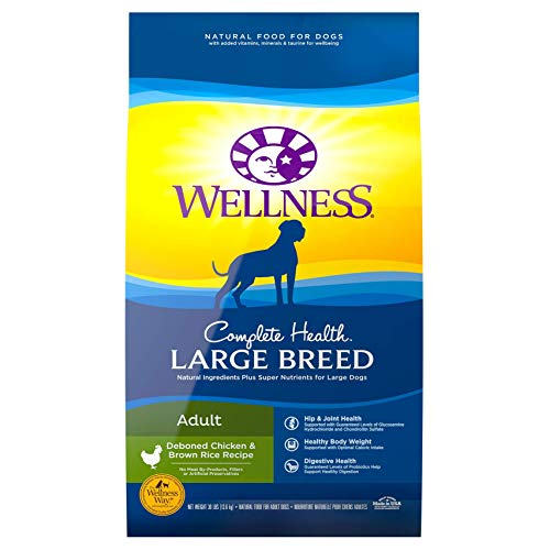 Wellness Complete Health Natural Large Breed