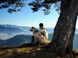 Young man enjoying mountain view with his dog