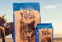 wild earth dog food with dog